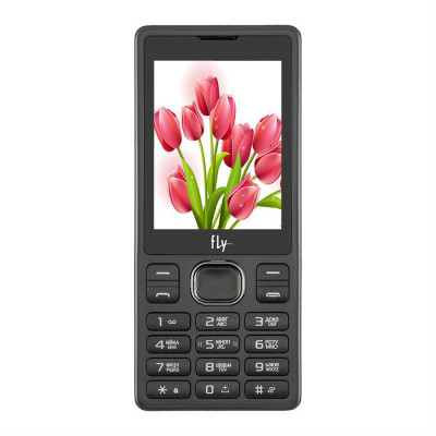 Мобильный телефон Fly FF282 (Черный)