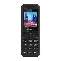 Мобильный телефон TeXet TM-D302 (Черный)